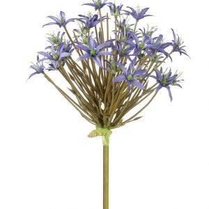 Violet Spider Allium Stem