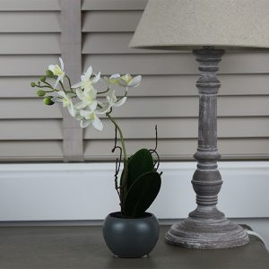 Mini Faux Potted Phalaenopsis Orchid